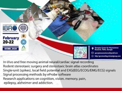 Animal Electrophysiology Webinar