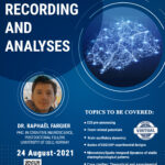 EEG/ERPs Recording and Analyses