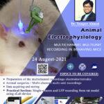 Animal Electrophysiology Workshop